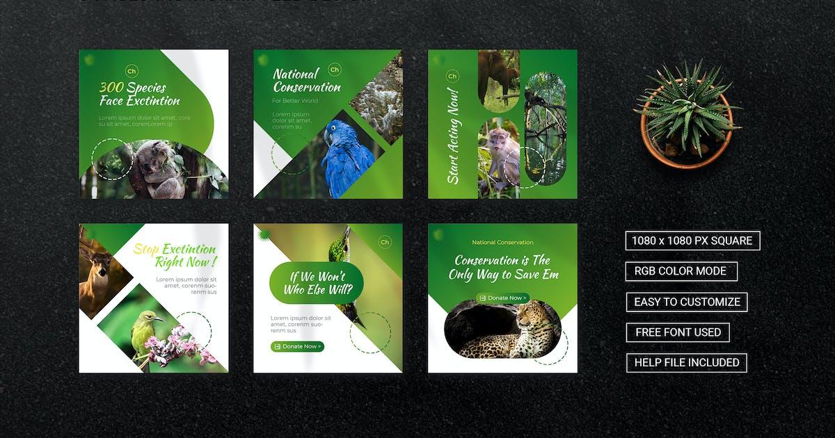 Download National Conservation - Instagram Feed by esensifiksi