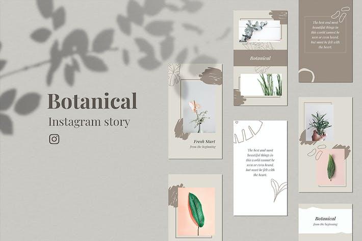 Thumbnail for Botanical_InstaStory