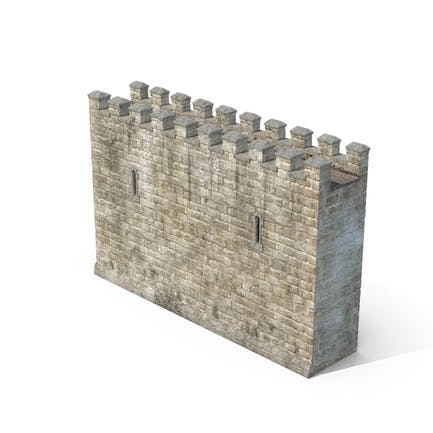 Castle Wall Section