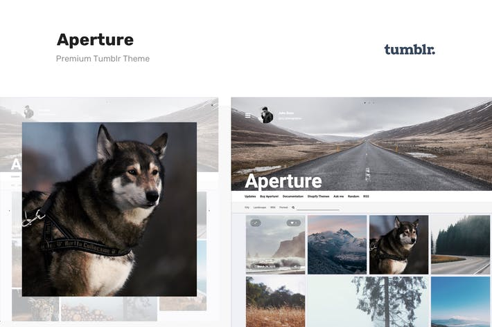 Thumbnail for Aperture - Responsive Photography Tumblr Theme