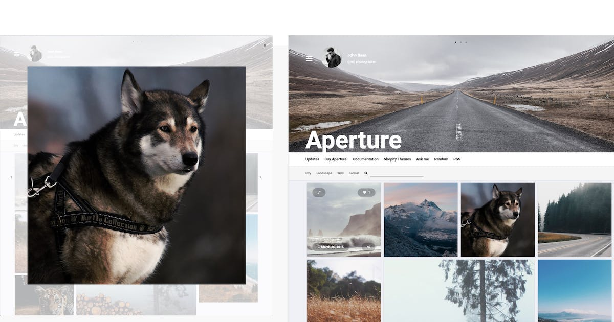 Download Aperture - Responsive Photography Tumblr Theme by roseathemes