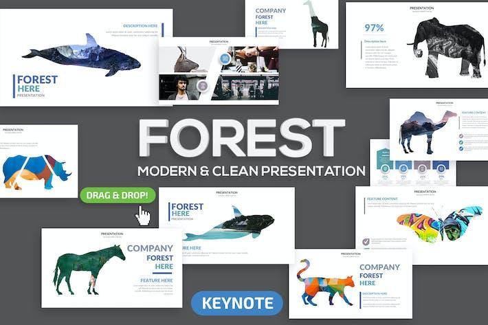Keynote по лесам