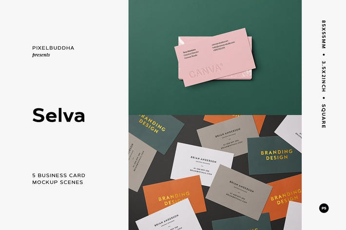 Thumbnail for 5 Business Card Mockup Scenes