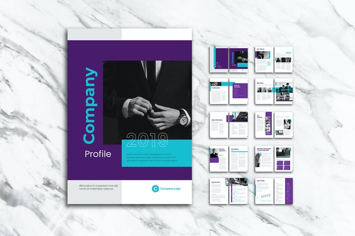 Cover Image For Company Profiles for Professional