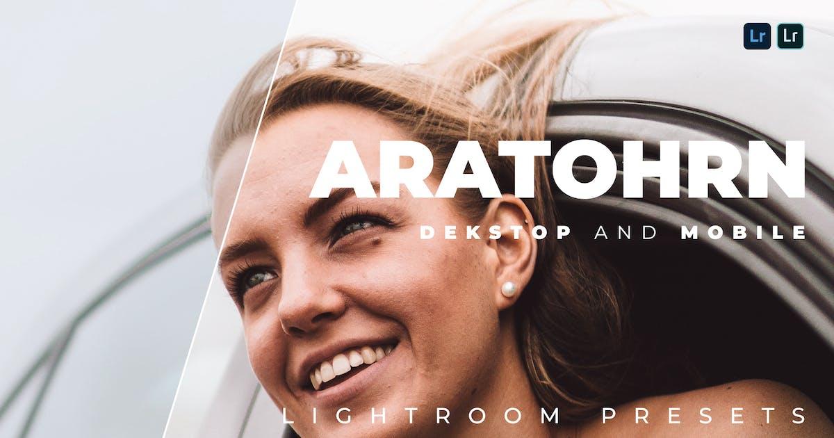 Download Aratohrn Desktop and Mobile Lightroom Preset by Bangset
