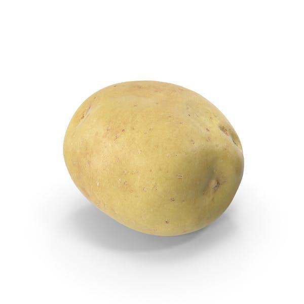Thumbnail for Potato