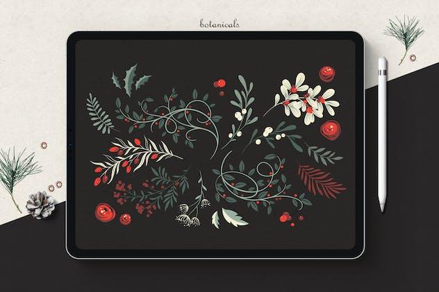 Winter Foliage // Botanicals