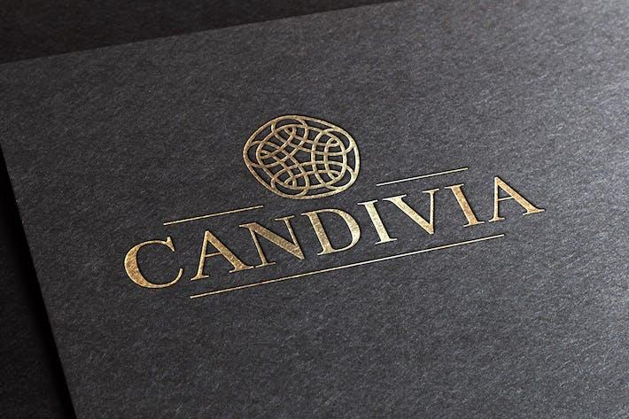 Thumbnail for Candivia Logo Template