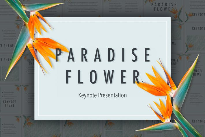 Thumbnail for Paradise Flower Keynote Template