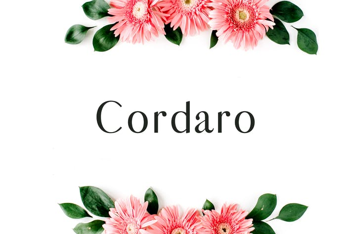 Thumbnail for Cordaro Serif Font Family