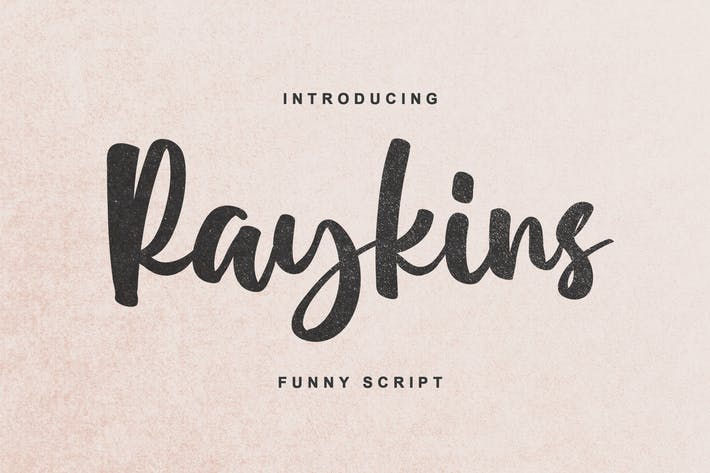 Thumbnail for Raykins - Funny Script