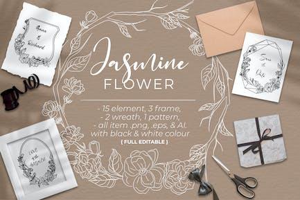 Jasmine Flower - Line art
