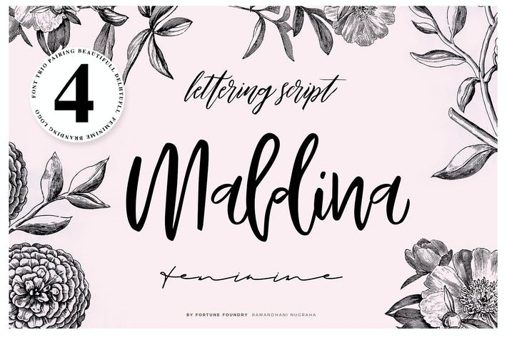 Thumbnail for Maldina 4 fonts