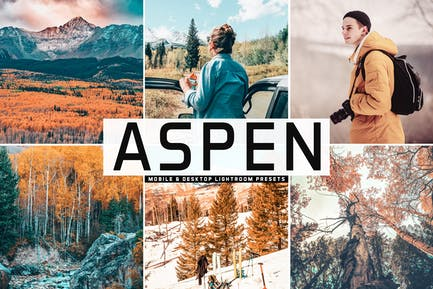 Aspen Mobile & Desktop Lightroom Presets