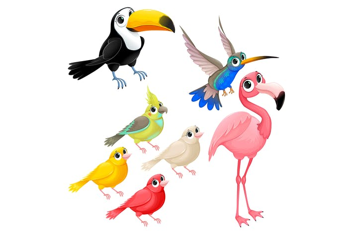 Thumbnail for Group of Tropical Birds