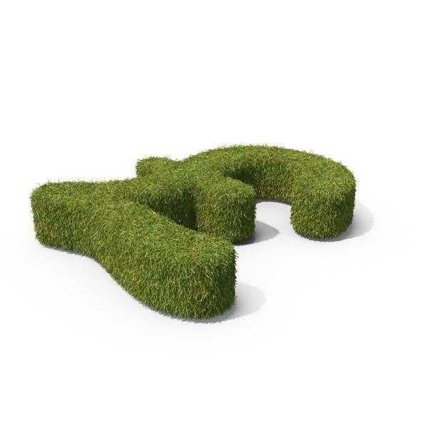 Símbolo de Grass Libras en el suelo
