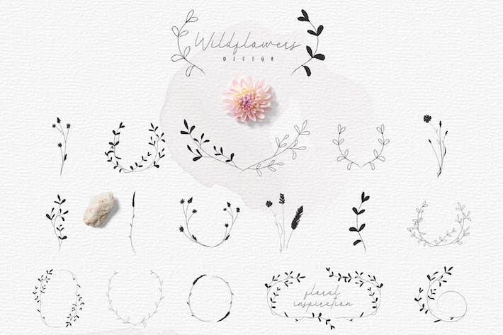 Thumbnail for Hand-drawn Botanic elements, Wildflowers Rustic.