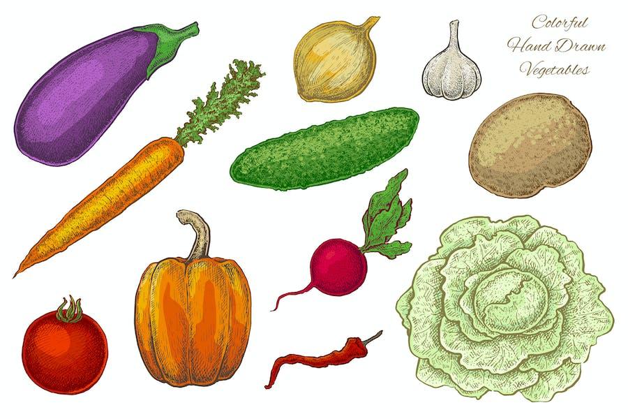Vegetables. Vector Set