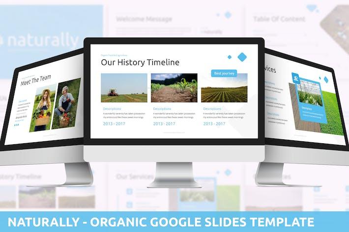 Естественно - Органический Шаблон слайдов Google