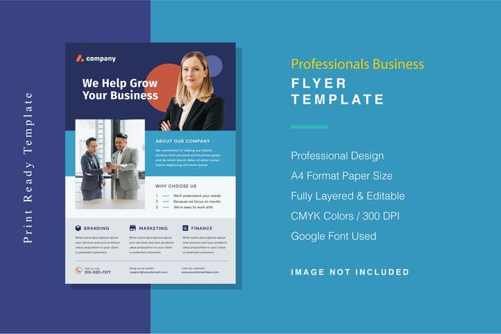 Professionals Business Flyer Template