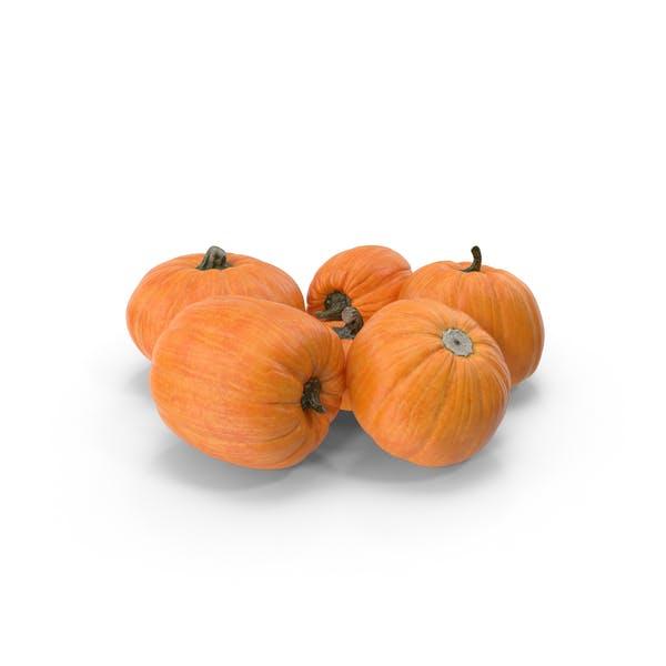Thumbnail for Pumpkin Patch