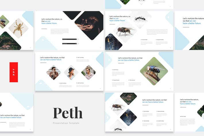 Thumbnail for Peth - Pest Control Powerpoint Template