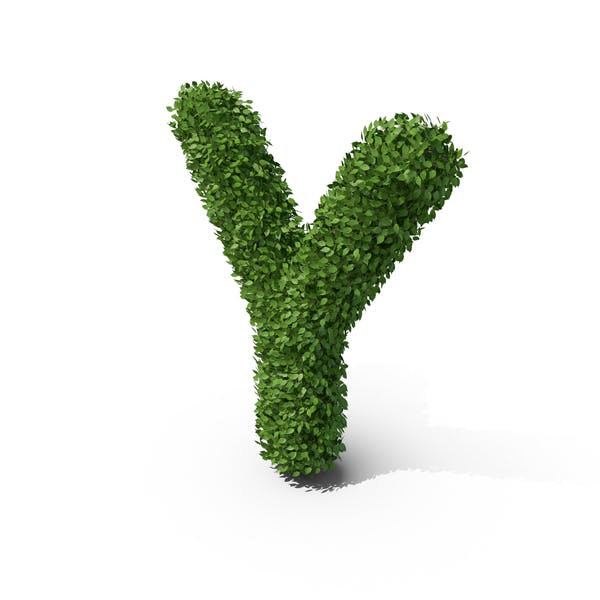 Thumbnail for Hedge Shaped Letter Y