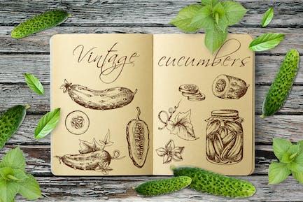 Vintage Cucumbers