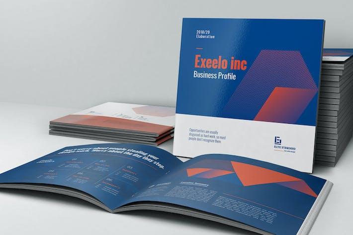 Thumbnail for Square Profile Brochure
