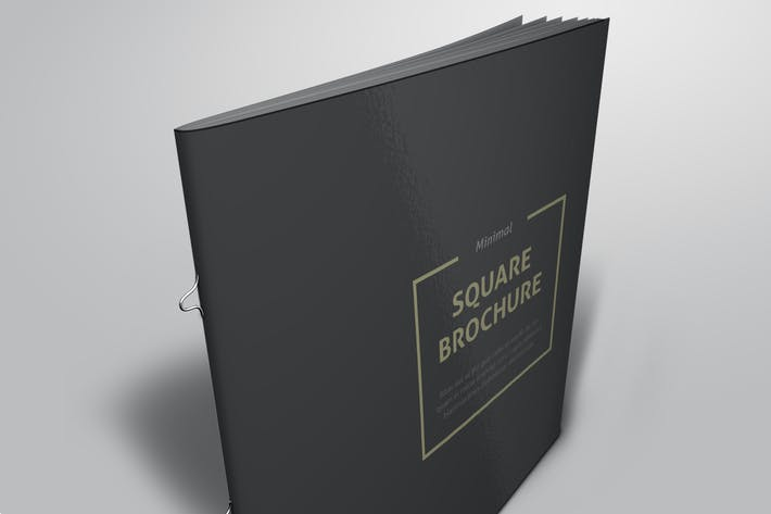 Thumbnail for Minimal Square Brochure