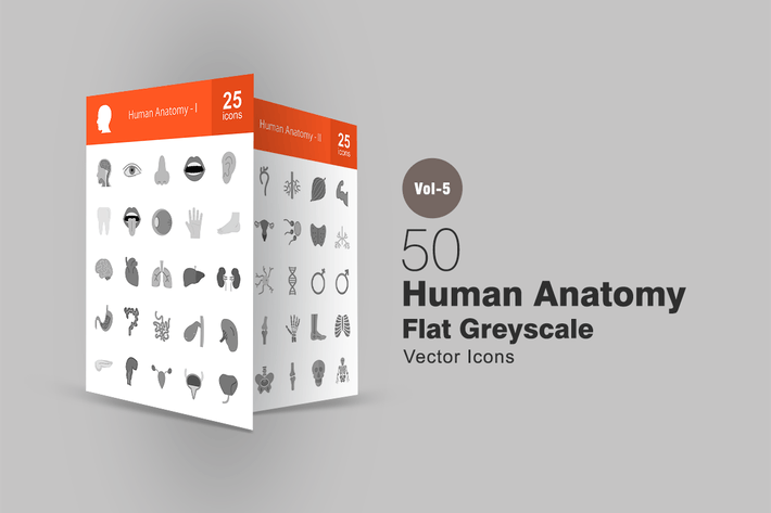 Cover Image For 50 Human Anatomy Greyscale Icons