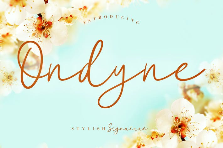 Cover Image For Ondyne Stylish Signature