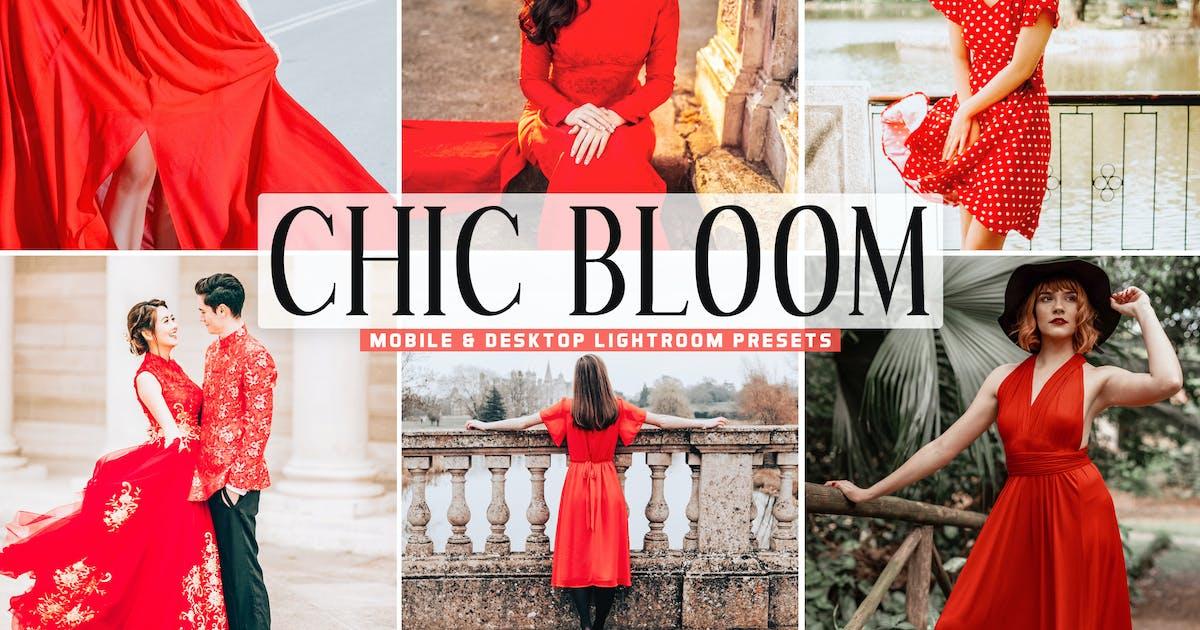 Download Chic Bloom Mobile & Desktop Lightroom Presets by creativetacos