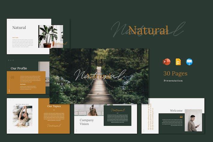 Thumbnail for Естественный - Шаблон презентации