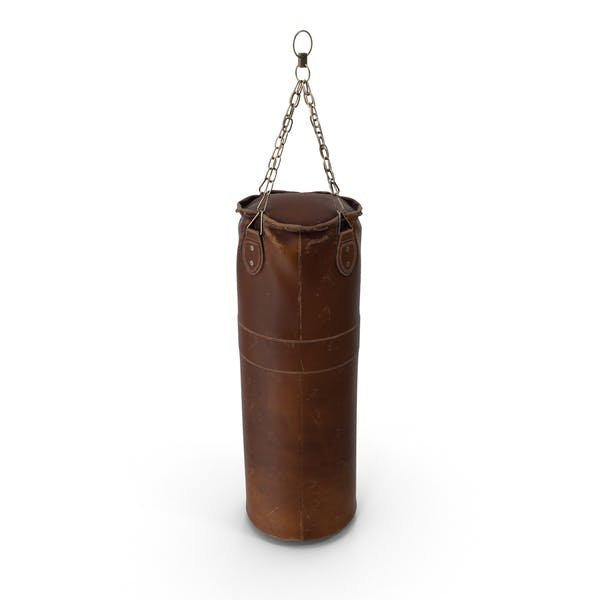 Cover Image for Polished Heavy Bag