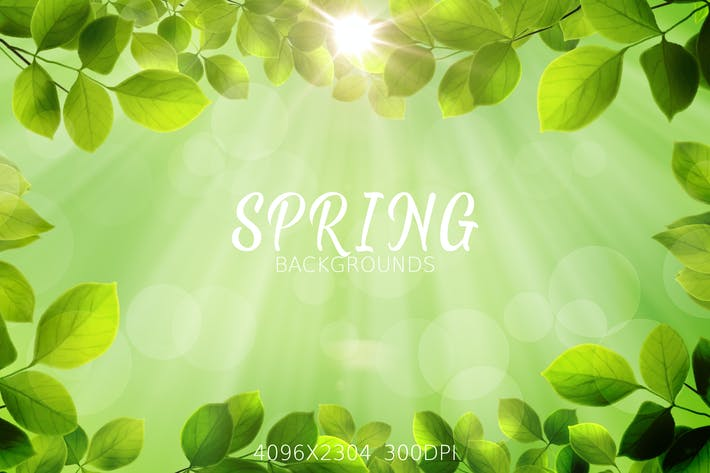 Thumbnail for Spring Leaves Backgrounds