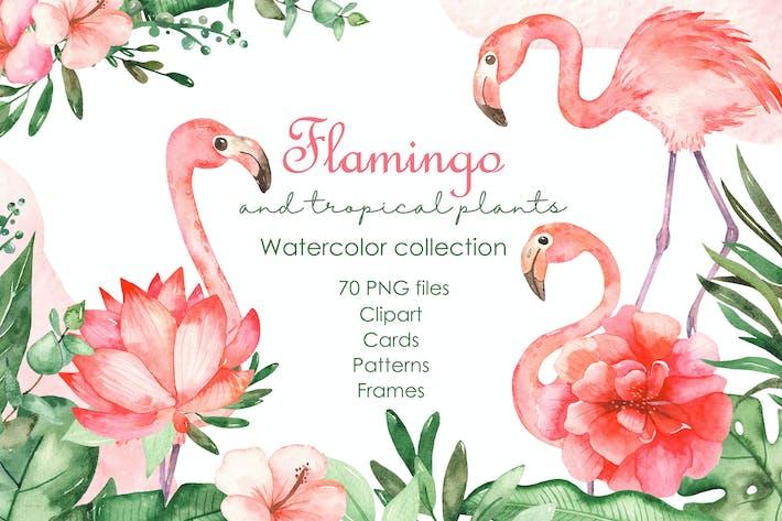 Thumbnail for Flamants à l'aquarelle et plantes tropicales