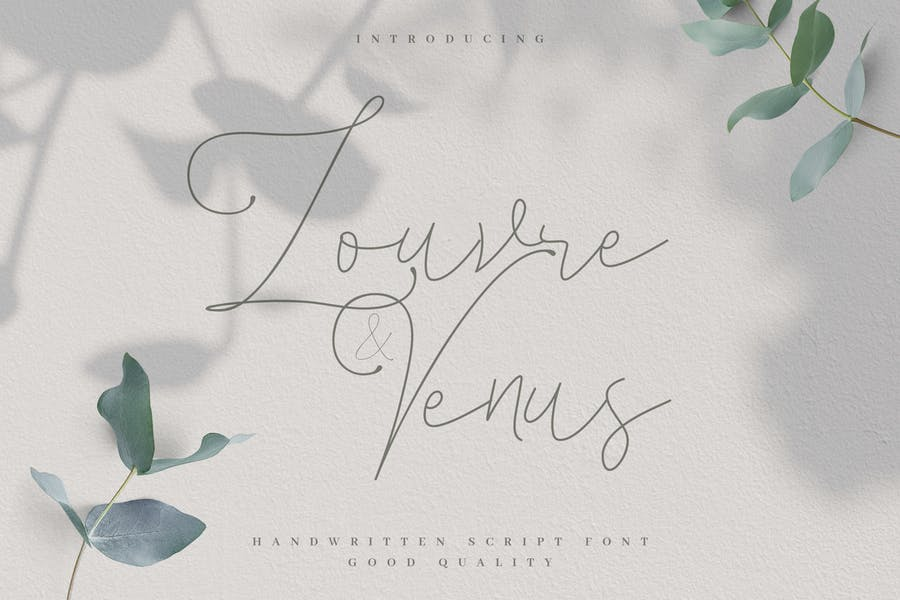 Louvre and Venus - Romantic Signature Font