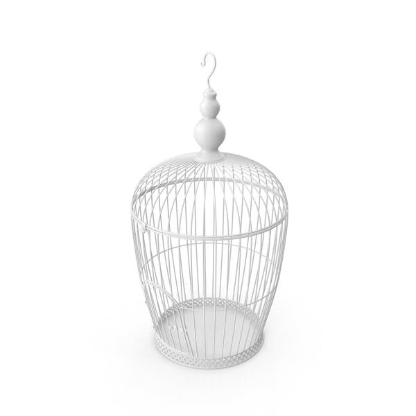 Thumbnail for White Bird Cage