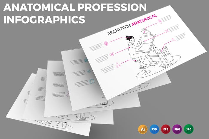 Anatomical Profession – Infographics Design