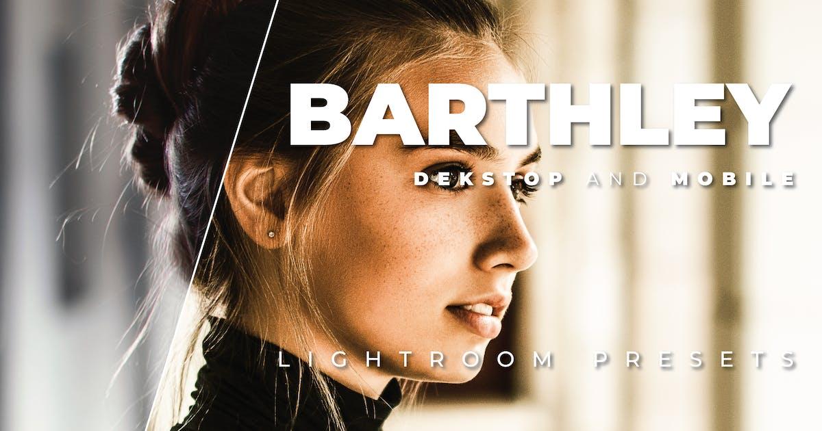 Download Barthley Desktop and Mobile Lightroom Preset by Bangset