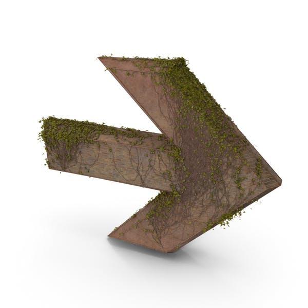 Ancient Stone with Ivy Vines Symbol Arrow
