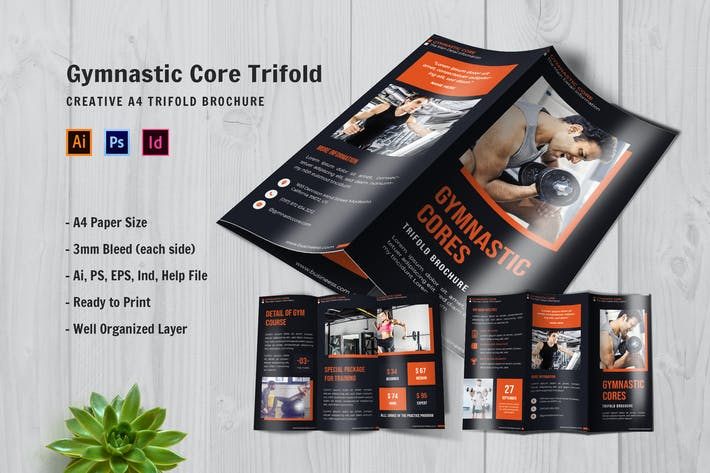 Gymnastic Core Trifold Brochure