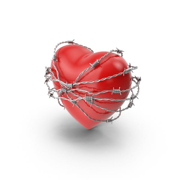 Cover Image for Heart in Barbed Wire
