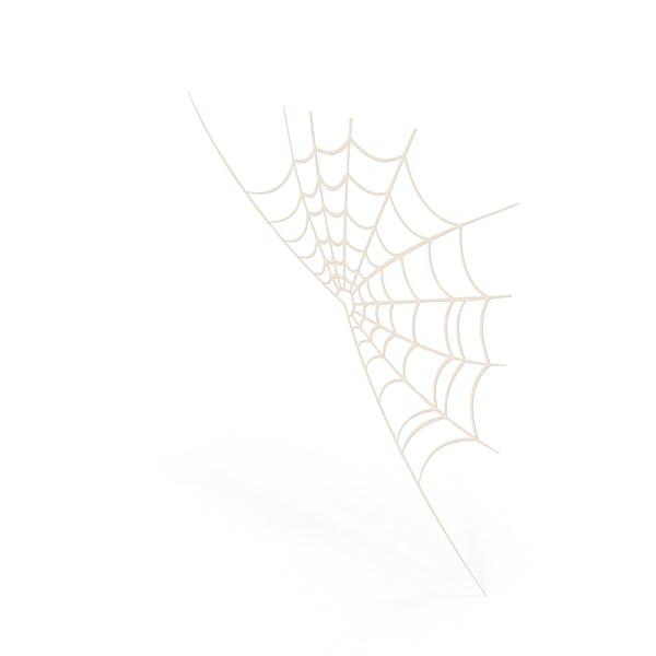 Spinnennetz Cartoon