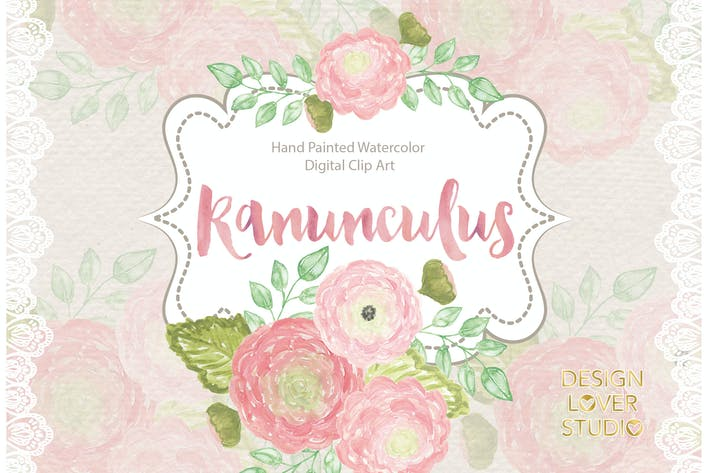 Thumbnail for Watercolor Ranunculus flowers