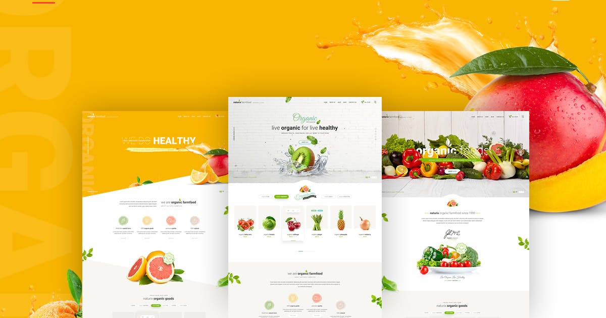 Download Naturix - Organic Store by youwes