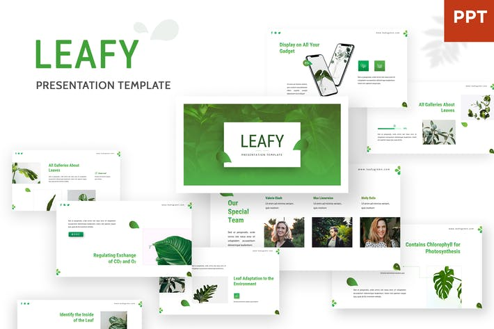 Cover Image For Leafy - Powerpoint Template