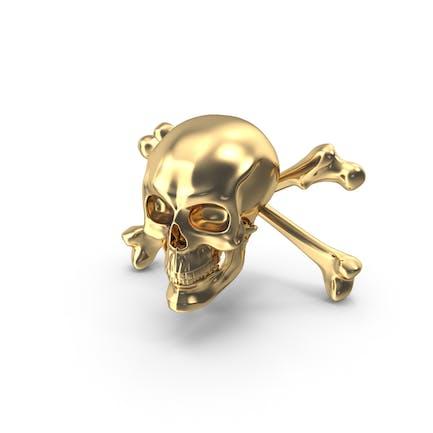 Cráneo y Huesos