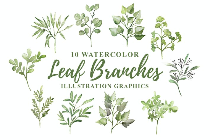 Thumbnail for 10 Watercolor Leaf Branches Illustration Graphics